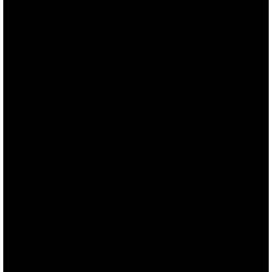 noun_4265